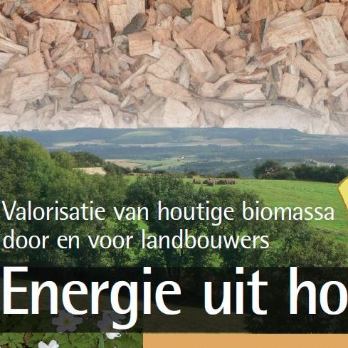 voorflap energie uit hout